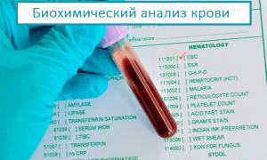 Биохимия крови в Инвитро